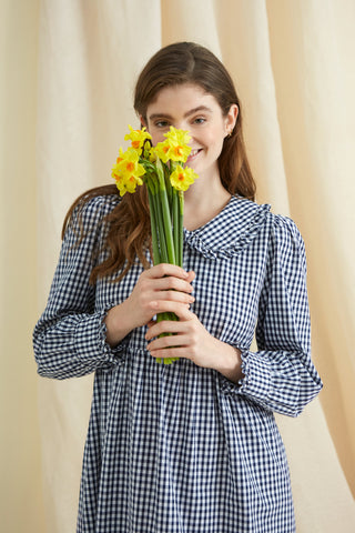Gingham Collar Market Dress