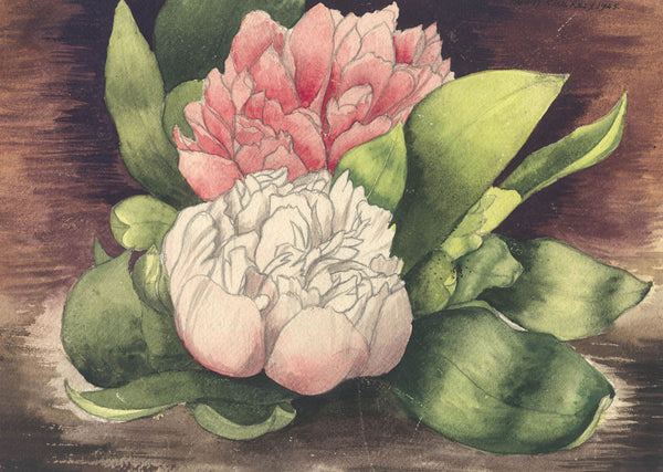 Cecil Riley - Peony, Affordable 1945 Watercolour Painting