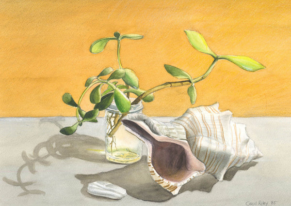 Cecil Riley - Still Life With Shell, 1985 Mixed Media Original Painting