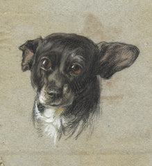 Raymond-Barker Family - Dog Portrait, 19th Century Pastel
