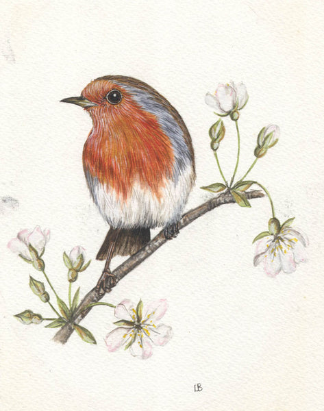 L. Brown - Christmas Robin, Mid 20th Century Watercolour