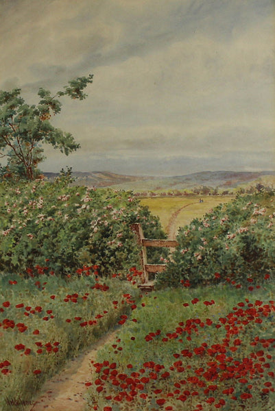 Welch Jones - Poppies, Early 20th Century Original Watercolour