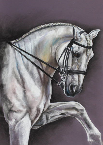 Danielle Allen - Lipizzaner Horse, Original Contemporary Pastel Drawing