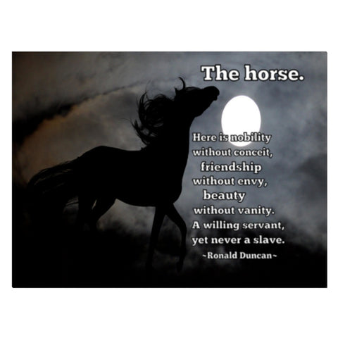 "Horse Lover Wall Art Canvas - ""The horse. Here is nobility without conceit...Unique: Not Found in Stores!"