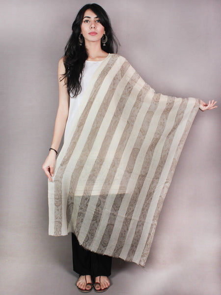 Beige Brown Pure Pashmina Handloom Stole from Kashmir - S6317091