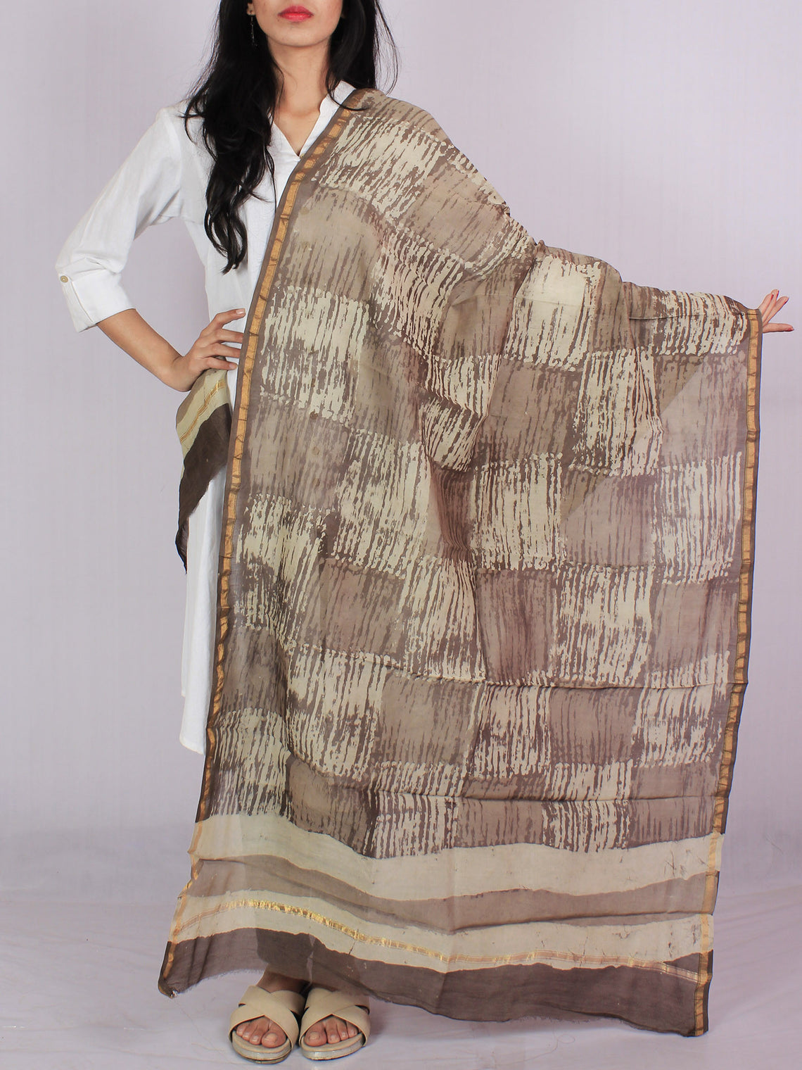 Brown Beige Ivory Chanderi Hand Black Printed & Hand Painted Dupatta - D04170114