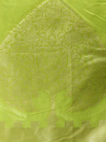 Banarasi Chanderi Dupatta With Resham Work - Light Green & Gold - D04170807