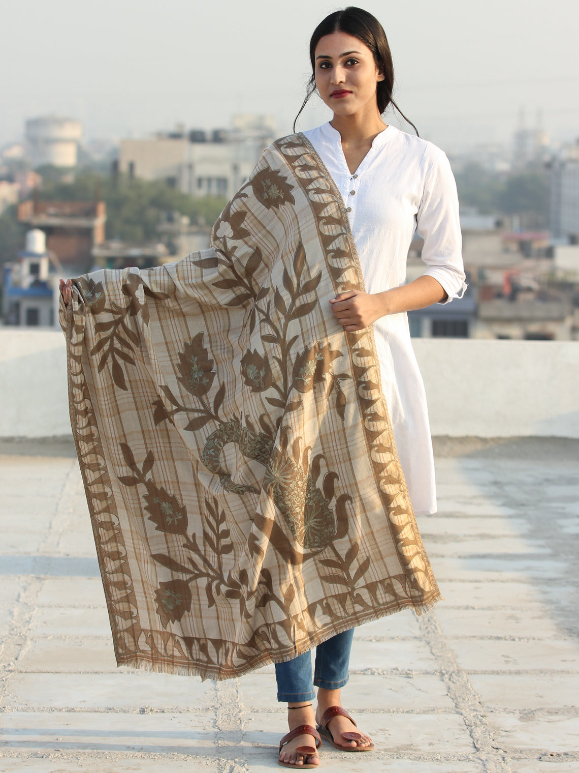 Beige Mud Brown Aari Embroidered Pure Wool Self Check Kashmiri Shawl - S200510