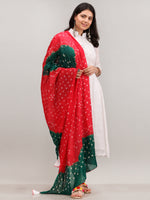 Noor Eshal - Self Work ALine Kurta Pant Set With Bandhini Dupatta - KS117AXXD3