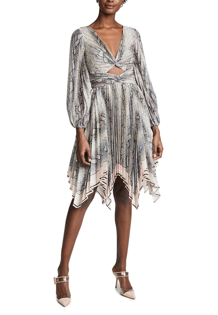 Grey Corsage Snake Print Pleated Mini Dress