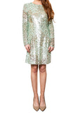 Mint All Over Sequins Dress