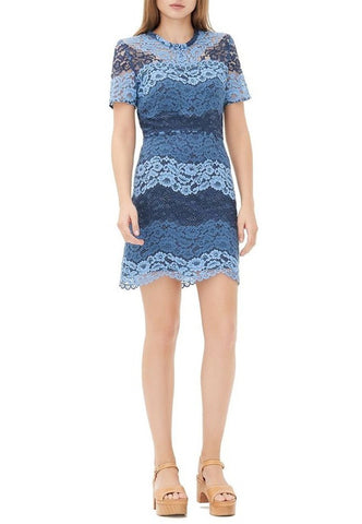 Blue Paradise Floral Embroidered Tulle Mini Dress