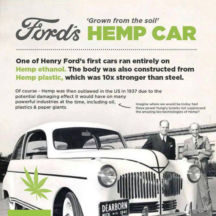 Hemp; A Brief History & Environmental Facts