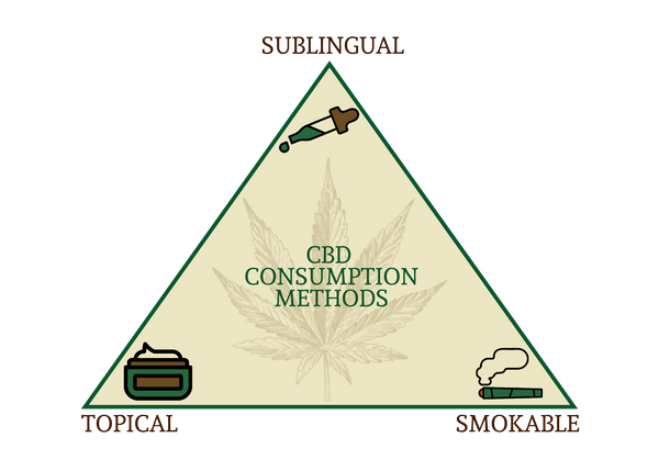 CBD Consumption Methods Infographic