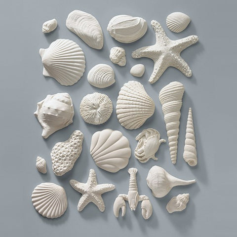 Gumpaste Sea Shells - 23 pieces