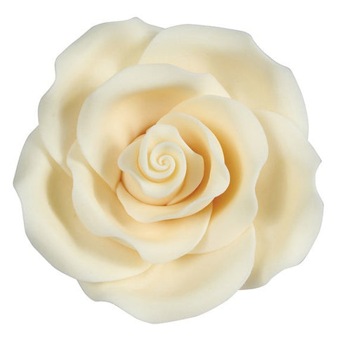 Soft Sugar Rose - Ivory 63mm