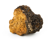 Chaga Factor Divina ingredient