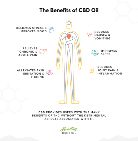 The Magic of CBD – inspiration fit