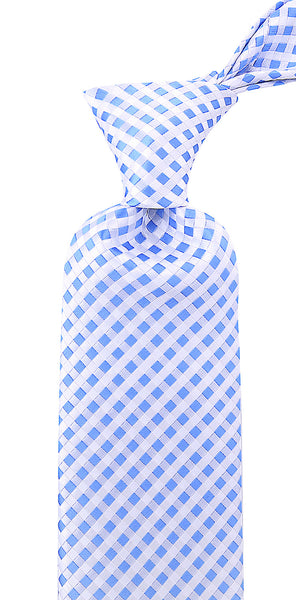 Blue Checkered Necktie