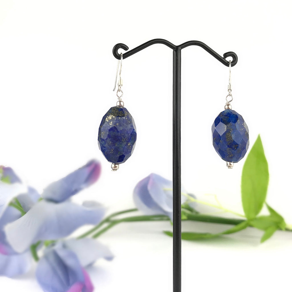 Sky Drop Earrings - VE557