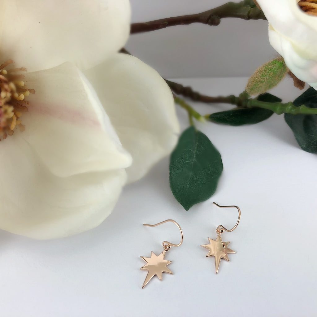 Golden Star Earrings - SE4829