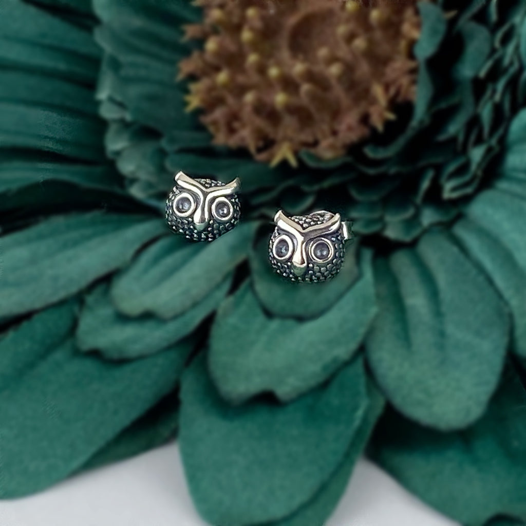 Night Owl Stud Earrings - VE569