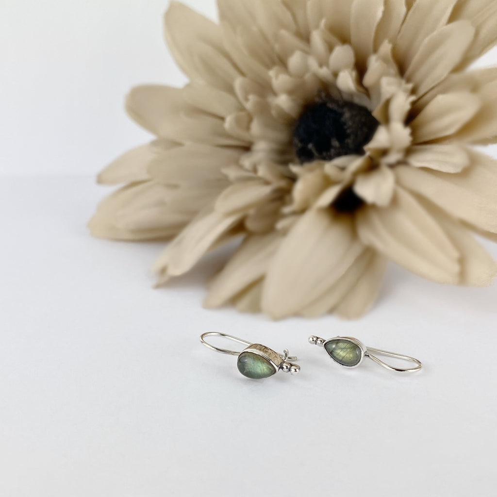 Labradorite Rain Earrings - SE2759