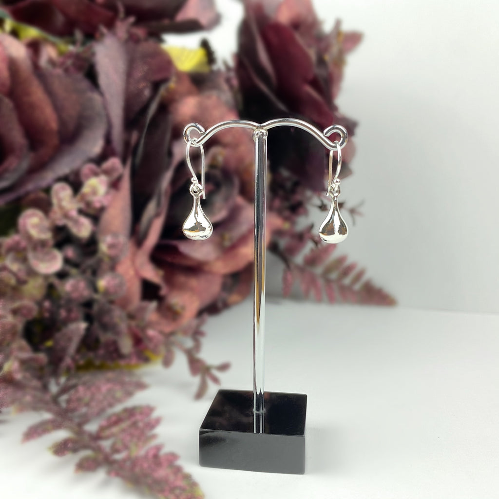 Molton Silver Earrings - VE566