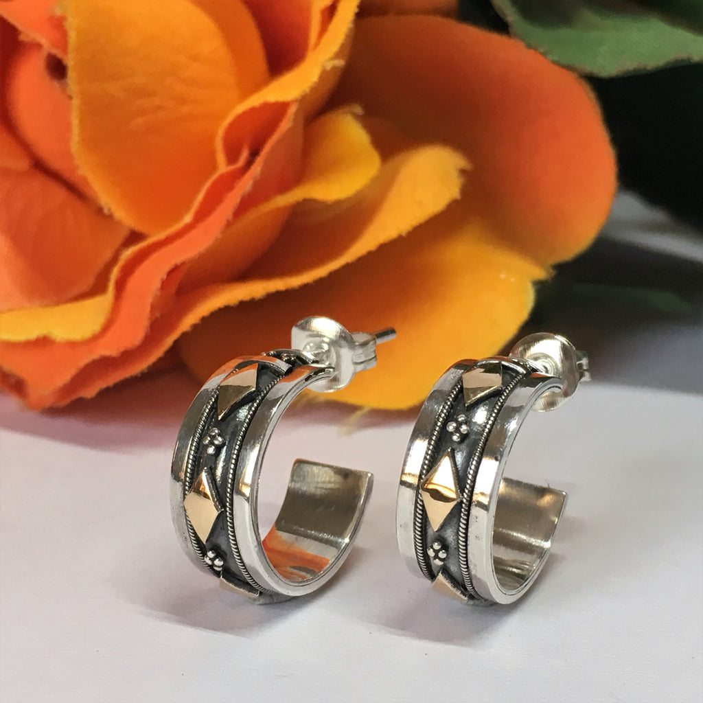 Harlequin Hoop Earrings - VE389