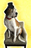 Custom Pet Portrait - Full body or Additional detail
