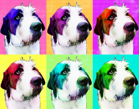 Custom Warhol Style Portrait - Featuring 4 or 6 Squares