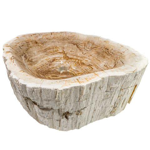 Petrified Fossil Wood Vessel Sink, NOSV-FW