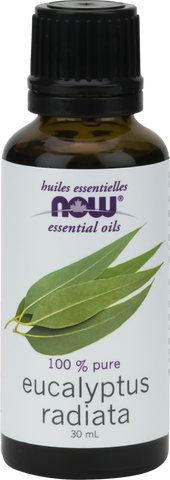 Now Eucalyptus Radiata Oil 30 ml - Body Energy Club