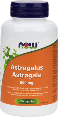 NOW Astragalus 500mg | Immune Support | NOW Foods