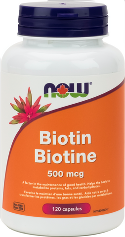 NOW Biotin 500 mcg 120 Cap - Body Energy Club