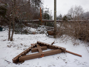 Severe Ice Storm Damage & Emergency Appeal