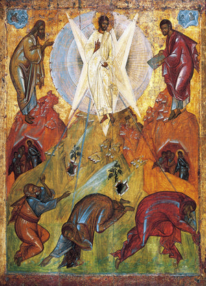 Beholding the Glory of God - A Sermon for Transfiguration (2020)