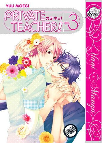 Private Teacher! Vol. 03 - June Manga