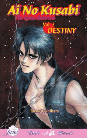 Ai no Kusabi Vol. 2: Destiny - June Manga