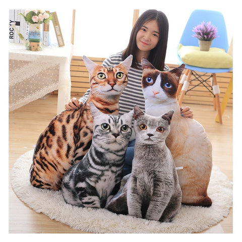 Realistic Cat Pillows