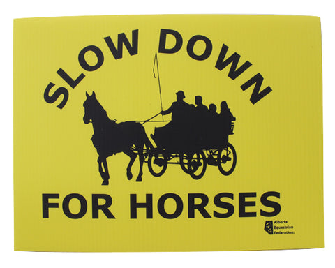 Slow Down For Horses - Driving