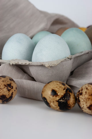 Blue Naturally Dyed Easter Eggs in an Egg Carton, by The Lesser Bear