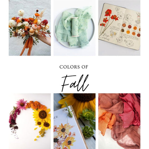 Fall Colors of Naturally Dyed Silk Ribbon and Dye Plants