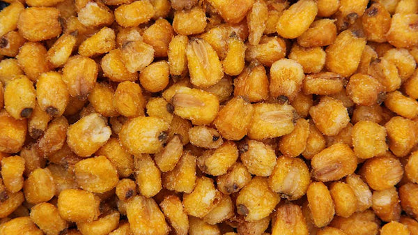 Roasted Corn Nuts Salted