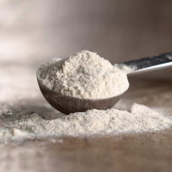 Diastatic Malt Powder