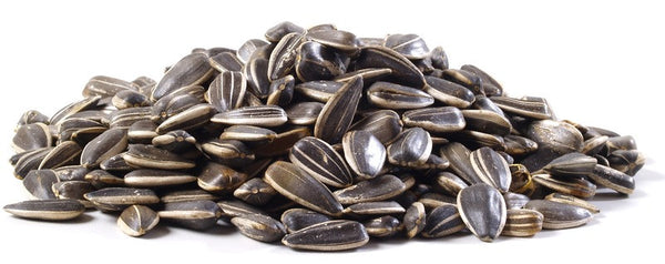 Raw Sunflower Seeds In the Shell