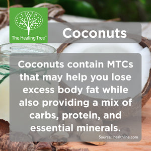 Benefits of Coconuts | The Healing Tree