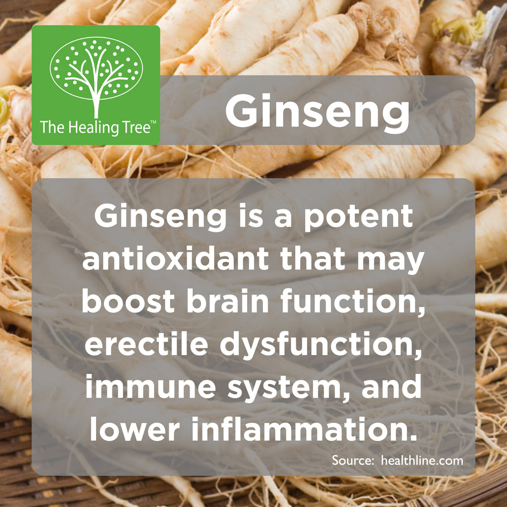 Benefits of Ginseng | The Healing Tree