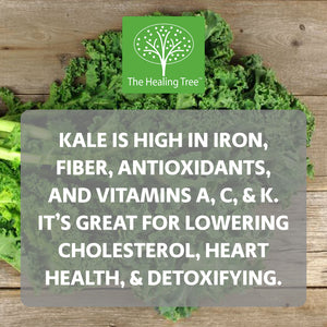 Benefits of Kale | The Healing Tree