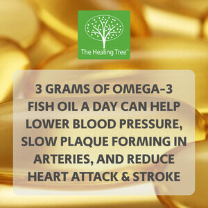 Benefits of Fish Oil | The Healing Tree